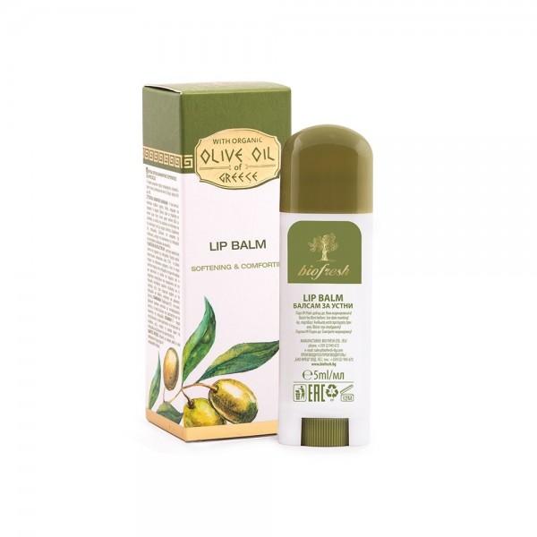 Lippenbalsam Olive
